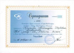 Сертификат Климова А. 11