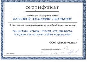 Сертификат курсы Карпова Е